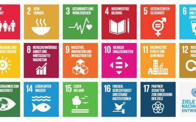 SDG e-Learning DEMO