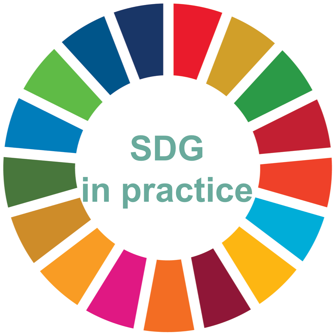 Standortbestimmung Status Check SDG in practice SDG Kreis rund um SDG in practice